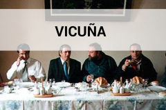 Chile 2001 -  Vicuña