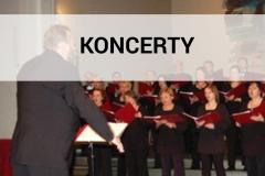 Islandia 2007 - Koncerty