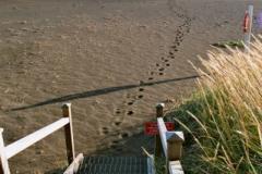 ...zaprasza do zejścia na plażę. Foto: Piotr Bocian