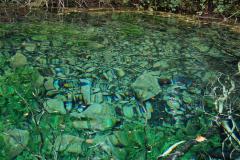 Przesiąka przez wapienne skały Galiczicy z odległego o 10 km jeziora Prespa; jest przy tym kryształowo czysta. Fot. Anna Potapowicz