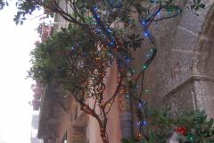 …choć czuć już Boże Narodzenie (na ulicach z głośników płyną świąteczne pieśni w wykonaniu burmistrza). Fot. Anna Potapowicz